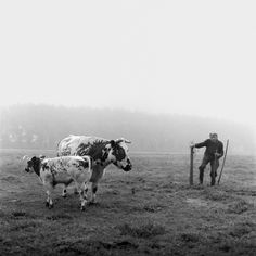 Theofiel - by Stephan Vanfleteren (1969), Belgian