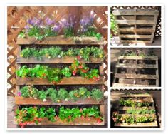 Creative Ways to Upcycle Pallets in your Garden Such a cool idea for making the most out of a small back yard or apartment patio! Easy steps to making your own pallet planter Palet Garden, Deco Floral, Garden Buildings, Garden Planters, Pallet Planters, Pallet Fence, Garden Projects, Vegetable Garden, Herb Garden