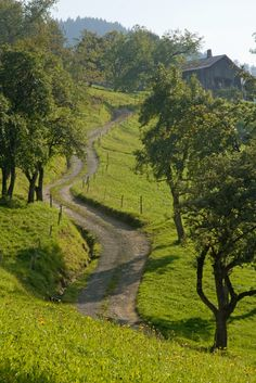 https://flic.kr/p/69jzfM | Long & Winding Road | Country road outside Thones, France.