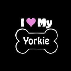 I Love My Yorkie...Do you?