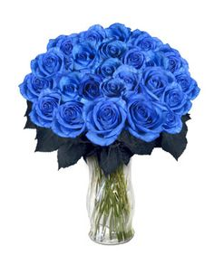 Blue Roses - Flowers Photo (25785536) - Fanpop blue roses