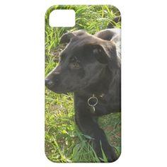 Lacquer Black German Shepherd Pup iPhone 5 Cases   $39.95