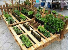 Great way to do the herb bed.