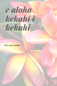 e aloha kekahi i kekahi Hawaiian Sayings, Hawaiian Phrases, Hawaiian Art, Vintage Hawaiian, Aloha Quotes, Hawaii Quotes, Mahalo Hawaii, Hawaii Hula, All About Hawaii