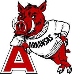 Arkansas Razorbacks Football News | Looking Through The Crazy Stuff In eBay's Vintage Razorback Collection