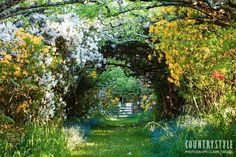 Lovely pathway through a arbor of vines!!! Bebe'!!! Lovely flowered srtting!!!