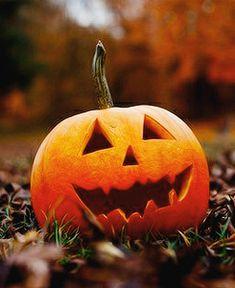 Halloween, pumpkin, and autumn-bild Halloween Images, Spooky Halloween, Holidays Halloween, Vintage Halloween, Halloween Pumpkins, Halloween Decorations, Halloween Pumpkin Carvings, Happy Halloween Pictures, Rustic Halloween