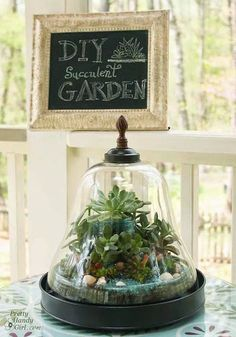 Jump on the Hot Terrarium Trend With These 10 DIYs