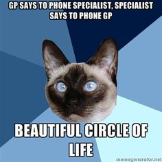 """[Image: 6-piece blue colored background with a Siamese cat.Text reads: """"GP SAYS TO PHONE SPECIALIST, SPECIALIST SAYS TO PHONE GP - BEAUTIFUL CIRCLE OF LIFE"""""""