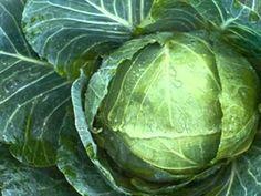 Romhányi József -KECSKÉRE KÁPOSZTÁT Cabbage, Vegetables, Literature, Youtube, Literatura, Cabbages, Vegetable Recipes, Youtubers, Brussels Sprouts