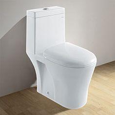 Ariel CO1034 Contemporary Toilet with Dual Flush  #BathroomRemodel #Toilet #BlondyBathHome