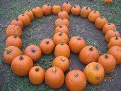 Peace Out Pumpkins