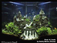 Awesome Aquascape Gallery Ideas that You Never Seen Before 6 - aquascaping Aquarium Terrarium, Terrarium Reptile, Aquarium Setup, Diy Aquarium, Nature Aquarium, Aquarium Design, Saltwater Aquarium, Aquarium Fish Tank, Freshwater Aquarium