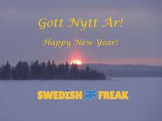 Gott Nytt År - Happy New Year from Swedish Freak!