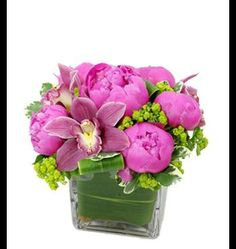Peonies and Orchids - EHF