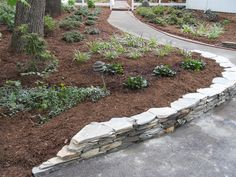 California drought resistant landscaping ideas low for Landscaping rocks greensboro nc