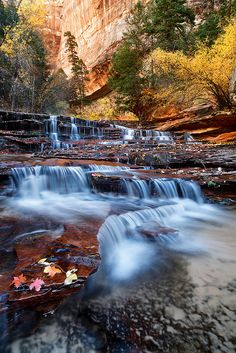 Archangel Falls - Zion National Park, Utah, USA
