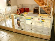 23 Superb Dog Playpens Indoor 36 Inch Dog Playpens For Small Dogs Indoor - Dog Kennel Dog Playpen Indoor, Puppy Playpen, Building A Dog Kennel, Diy Dog Kennel, Kennel Ideas, Dog Kennels, Dog Kennel Designs, Whelping Puppies, Whelping Box