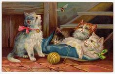 Chromo Litho Postcard of Four Kittens with A Ball of Yarn Looking at A Bee | eBay