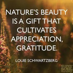 Louie Schwartzberg On Nature S Beauty Natural Beauty Quotes Nature Beauty Louie Schwartzberg
