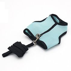 Pawstrip Harness with Leash for Rabbits Rats and Guinea Pigs,Small Animal Harness set (Blue,S)