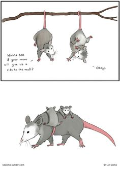 My favorite Liz Climo comics. Cute as hell. Funny Animal Comics, Cute Comics, Animal Memes, Funny Comics, Funny Animals, Cute Animals, Liz Climo Comics, Mom Mobile, Opossum