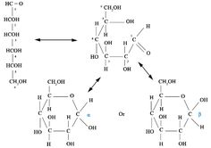 A polymer of nucleic acids containing the monomer of