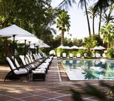 Photo Gallery for Hotel La Mamounia in Marrakech - Morocco Mamounia Marrakech, La Mamounia, Marrakech Morocco, Best Hotel Deals, Best Hotels, Leading Hotels, Hotel Pool, Hotel Reviews, Luxury Travel