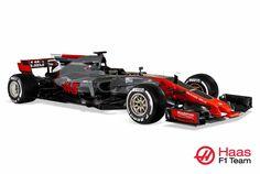 Haas VF-17 Ferrari, Season 2107