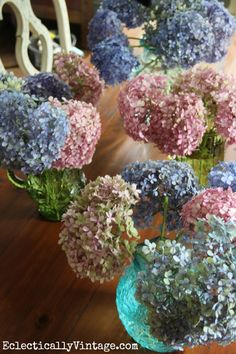 How to dry hydrangeas - this is the easiest way I've seen… Hortensia Hydrangea, Hydrangea Care, Hydrangea Not Blooming, Hydrangea Flower, Cut Flowers, Dried Flowers, Beautiful Flowers, Potted Flowers, Beautiful Bouquets