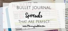 14 Bullet Journal Spreads that are perfect for everyday use. Stay on track with anything and everything you could possible want.
