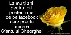 Felicitari de Sfantul Gheorghe - La multi ani, Ghiorghita - mesajeurarifelicitari.com Past, Facebook, Happy Birthday, Birthday, Past Tense