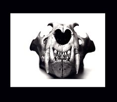 LION Animal Skull Front View Photo by Irving Penn 1980s Fine Art  Duotone Book Art Print Black & White Photography Wild Cat Panthera leo via Etsy