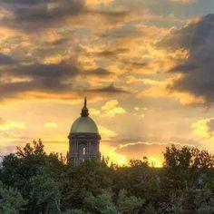 Go Irish, Notre Dame, Taj Mahal, Country, Building, Pictures, Travel, University, Photos