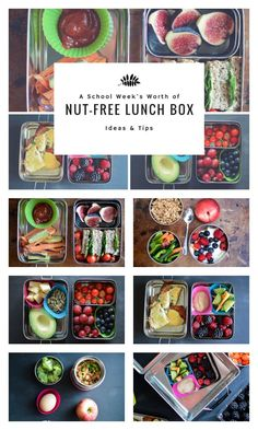 5 Nut-Free Lunch Box Ideas - A Week's Worth of Nut-Free Lunch Box Ideas! http://www.superhealthykids.com/5-nut-free-lunch-box-ideas/