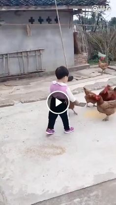 Animals Discover Funny and Interesting Videos Cant Stop Watching From Parts Unknown Funny Short Videos Funny Videos For Kids Funny Video Memes Funny Animal Videos Kids Videos Funny Jokes Hilarious Baby Animals Funny Animals Funny Baby Memes, Kid Memes, Funny Video Memes, Funny Babies, Funny Jokes, Hilarious, Top Funny, Funny Videos For Kids, Funny Short Videos