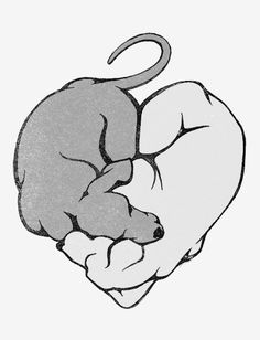 This week we are excited to spotlight how service dogs can change lives. This illustration of two dogs sleeping in the shape of a heart needs no words. Dogs bring a companionship and devotion that few can. This heart shirt is something everyone who has a dog can relate to.