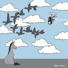 "Donkey ""Tino"" observes the flight of the penguin by Federico Monzani"