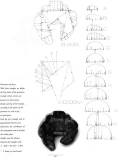 How to Lay Out a Croissant / Enric Miralles