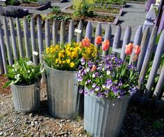 Galvanized trash cans as containers! // by Noelle Johnson Landscape Consulting Galvanized trash cans Raised Garden Planters, Flower Planters, Flower Pots, My Secret Garden, Potting Soil, Growing Flowers, Winter Garden, Garden Beds, Container Gardening