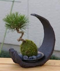 giardino zen - Cerca con Google
