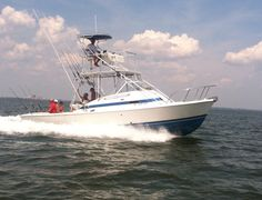 Enjoy deep sea fishing and charter fishing trips in Biloxi with SYL Charters. We are also providing various deals and offers for Guide fishing and Head boat fishing. http://www.sylcharter.com/