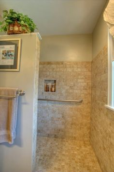 universal design shower stall with no door but will probably need a heater in ceiling want something like the spice rack that is pinned in the privacy - Shower Wall Tile Design