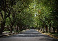 Lees meer oor Bloemfontein op LekkeSlaap.co.za. Free State, City Aesthetic, South Africa, Landscapes, Sidewalk, Country Roads, Explore, Places, Paisajes