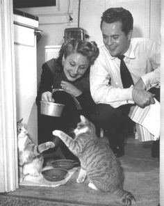 "Betty Garrett & Larry Parks with their cats. Garrett was one of the stars of ""On the Town"" (1949) and later played Mrs. Babish on TV's ""Laverne & Shirley."" Parks hurtled to box office popularity with the title role in 1946's ""The Jolson Story."" His film career was later destroyed during the McCarthy communist witch hunts, which also severely limited Garrett's career. [pr]"