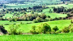 Vistas de los campos en primavera cerca de Conesa.