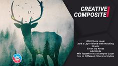 Let's cook up some creative style in this Creative Composite Look. First we will mix and blend in a tree layer to create a unique look. Photo Look, Composition, Moose Art, Photo Editing, Layers, Pdf, Training, Twitter, Craft