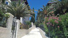 Mali Losinj ~ Croatia 👋🏼 ~ Summer Holidays ☀️ ~ ⛵️~ Ani Life 🌸 Croatia, Panama, Aqua, Sidewalk, Holidays, Summer, Life, Walkway, Vacations