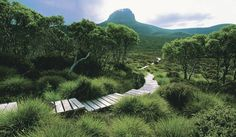 The Overland Track. Its a an iconic bucket list multiday hike and you can now choose to do it in comfort, walking the trail by day and relaxing in private hut accomodation at nighy. Cradle Mountain Huts: Walk The Overland Track, Tasmania