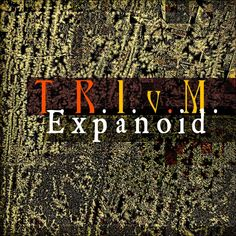 With Expanoid, a sequel to his previous recording emahOMmmm, T.R.I.v.M. moved out from his usual dark ambient-drone-noise land into a more experimental...